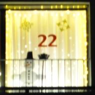 Adventsfenster_22